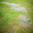 Presteigne St Andrews FC officials report they have concerns over the state of the Llanandras Park pitch ahead of the scheduled MMP with Norman Lloyd League, second division game against […]